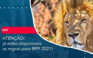 Ja Estao Disponiveis As Regras Para Irpf 2021 - Tononi Contabilidade | Contabilidade no Espírito Santo