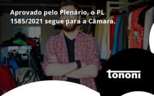 Aprovado Pleno Plenario O Pl 15852021 Segue Para A Camara Tononi - Tononi Contabilidade | Contabilidade no Espírito Santo